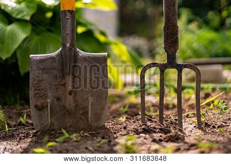 poster of Inserted Shovel And Pitchfork Into The Ground In The Garden