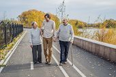 An Elderly Couple Walks In The Park With A Male Assistant Or Adult Grandson. Caring For The Elderly, poster