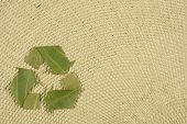 Recycling Symbol Made Fom Leaves