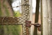 Alte Lock sichert einen Garten-Zaun