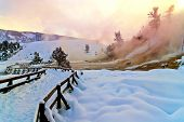 stock photo of mammoth  - Spectacular shot of Yellowstone Mammoth geyser in winter - JPG