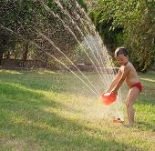 Water Sprinkler Fun