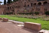 The Garden of the Vestal Virgins