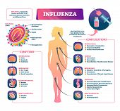 Influenza Vector Illustration. Labeled Flu Symptoms, Prevention And Complication Scheme. Diagram Wit poster