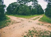 Dirt Road In The Forest. Deciduous Forest. Trees Against A Cloudy Sky. Trail In The Park. The Way Fo poster