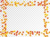 Maple Leaves Vector, Autumn Foliage On Transparent Background. Canadian Symbol Maple Red Yellow Gold poster