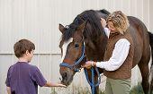 Boy Feeding Horse