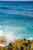 Caribeñas olas llegando a la orilla
