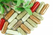 picture of organism  - herbal capsules with marjoram on white background - JPG