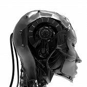 Cyborgirl