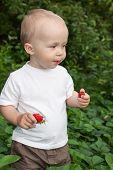 Beautiful Child In Summer Garden
