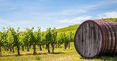 Tuscany-Weingut