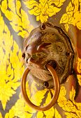 doorknocker with head of lion close up