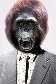 foto of ape-man  - Senior man with gorilla - JPG