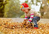foto of foliage  - Cute child playing with autumn leafs - JPG