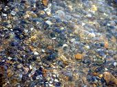 Multi-colored pebble under water