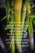 Confucious quote and bamboo -