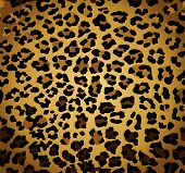 stock photo of leopard  - Abstract background with seamless leopard print - JPG