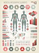stock photo of human internal organ  - Medical infographics elements - JPG