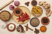 stock photo of rajasthani  - onion, red chilly, ginger, turmeric, tamarind, garlic, white pepper corn, jeera, cinnamon sticks, turmeric powder, pepper, cloves