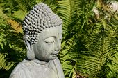 Head Of A Gray Buddha-statue In Front Of Fern-green