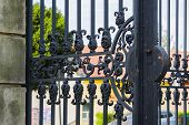 Old metal iron gate.