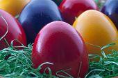 Closeup Easter Eggs