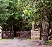 Gate To The Forest