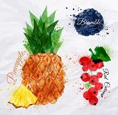 image of fruits  - Fruit set drawn watercolor blots and stains with a spray pineapple - JPG