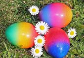Three Painted Easter Eggs In The Garden
