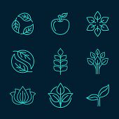 Organic Icons In Outline Style
