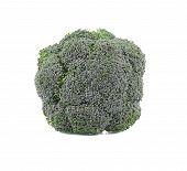 picture of cruciferous  - Fresh broccoli - JPG