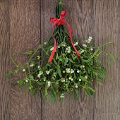 picture of mistletoe  - Christmas mistletoe plant with berries tied in a bunch with a red bow over oak background - JPG