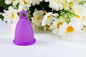 Menstrual Cup And Flowers