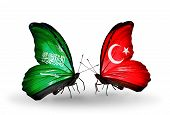 Two Butterflies With Flags On Wings As Symbol Of Relations Saudi Arabia And Turkey