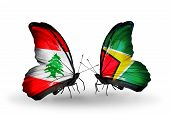 Two Butterflies With Flags On Wings As Symbol Of Relations Lebanon And Guyana