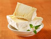 picture of penicillium  - French soft white rind cheese - JPG
