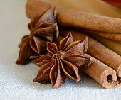 Star Anise and Cinnamon Sticks on the Wooden Board
