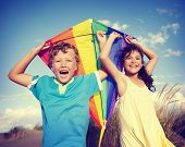 pic of kites  - Cheerful Children Playing Kite Outdoors Concept - JPG