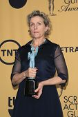 LOS ANGELES - JAN 25:  Frances McDormand at the 2015 Screen Actor Guild Awards at the Shrine Auditorium on January 25, 2015 in Los Angeles, CA