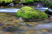 Green moss-covered stone in mountain stream