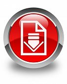 Download Document Icon Glossy Red Round Button