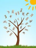 Money tree on drawn natural background