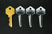 Golden key among ordinary keys