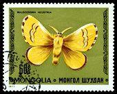 Vintage  Postage Stamp. Butterfly Malocosoma Neustria.