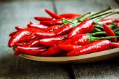 Red Hot Chili Peppers In The Dish