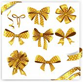 Set of gold polka dot gift bows with ribbons.
