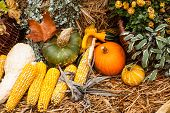 Autumn Ornament With Pumkins And Corn