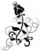 Abstract black and white rose vector shape.
