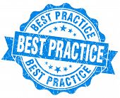 Best Practice Blue Vintage Isolated Seal